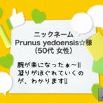 Prunus様